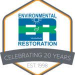 20 Years Logo Final